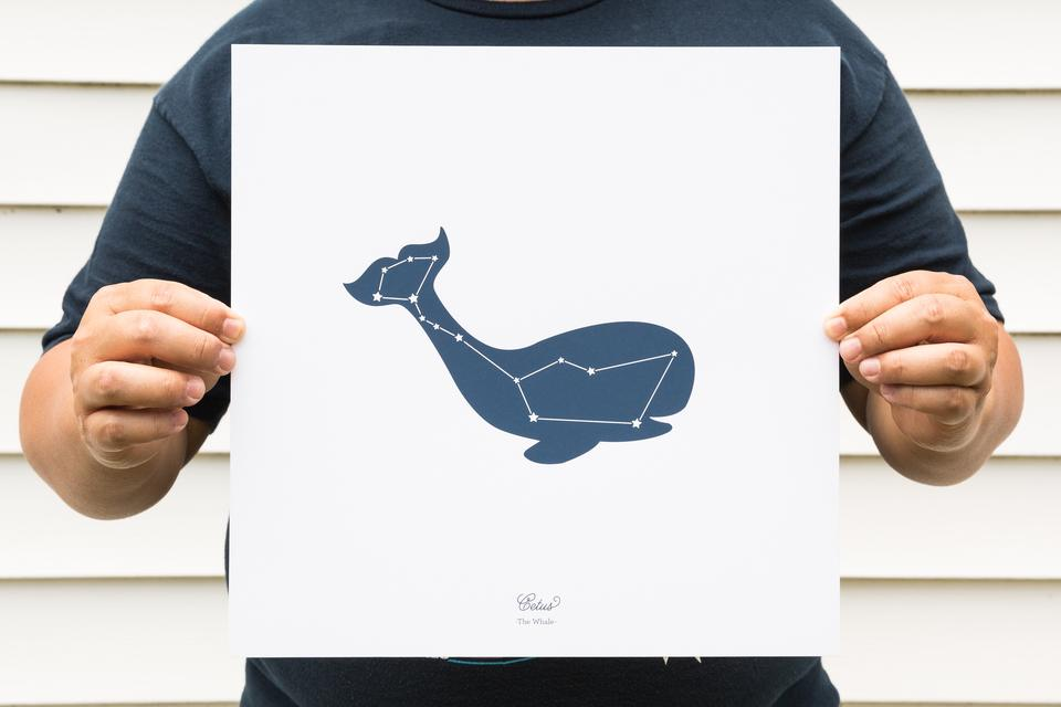 Jen Pepper Star Animal Posters